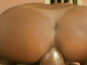 free shemale transsexual