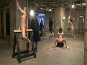 jail babes sex