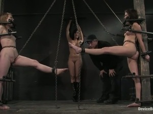 porn videos free shemale humiliation